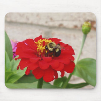 A Honey Bee Feasting Mouse Pad