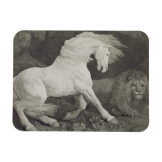 A Horse Affrighted by a Lion, engraved by the arti Rectangular Photo Magnet