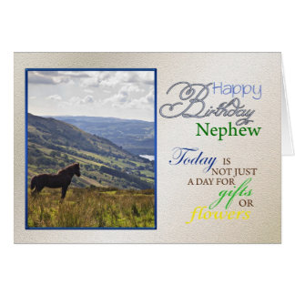 A horse birthday card for nephew.