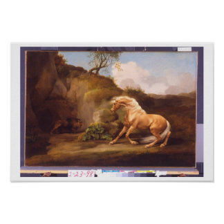 A Horse Frightened by a Lion, c.1790-5 (oil on can Poster