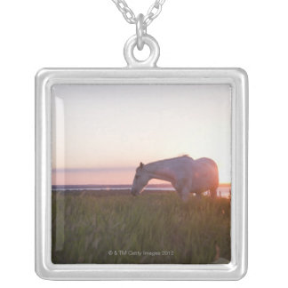 A horse in a field silver plated necklace