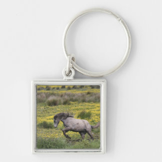 A horse running in a field of yellow wildflowers key ring