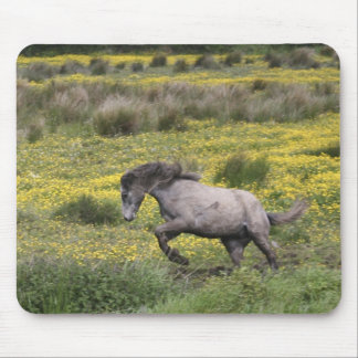 A horse running in a field of yellow wildflowers mouse mat
