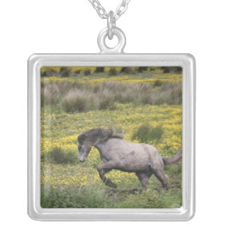 A horse running in a field of yellow wildflowers silver plated necklace