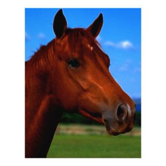 A horse standing proud 21.5 cm x 28 cm flyer
