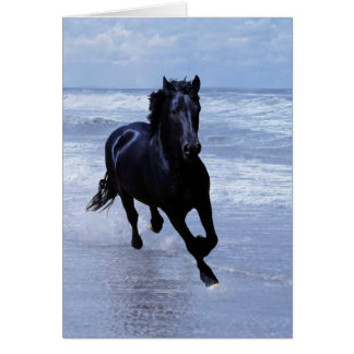 A horse wild and free card