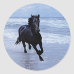 A horse wild and free round sticker