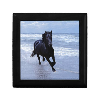 A horse wild and free small square gift box