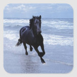 A horse wild and free square sticker