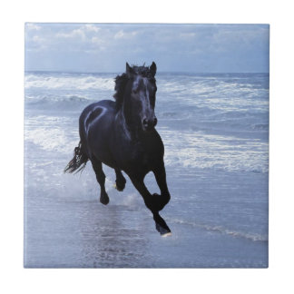 A horse wild and free tile