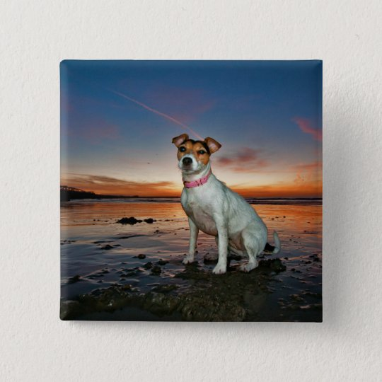 A Jack Russell Sitting Beach | Brighton Beach 15 Cm Square Badge