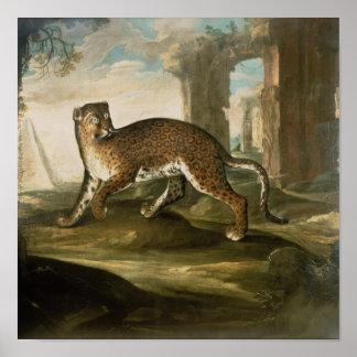 A Jaguar Poster
