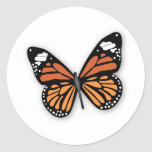 A Jewelled Monarch Butterfly Stickers