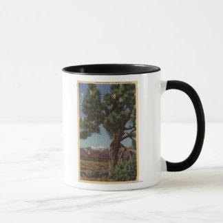 A Joshua Palm in Bloom in Californian Desert Mug