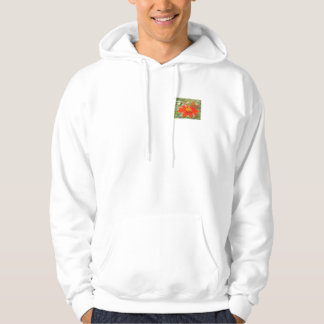 A Just Bee cause Hooded Pullover