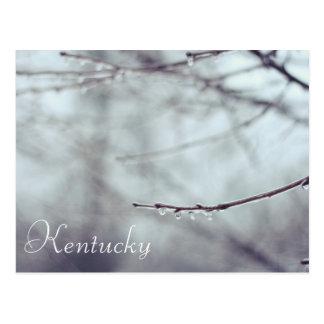 A Kentucky Ice Storm by JerseyFarm Postcard