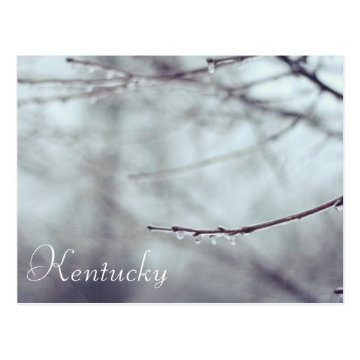 A Kentucky Ice Storm by JerseyFarm Post Cards