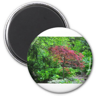 A Kingdom of Dreams 6 Cm Round Magnet