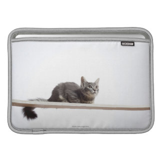 A kitten of Saiberian cat on the board MacBook Sleeve
