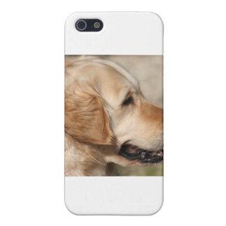 A Labrador's Smile iPhone 5 Cases