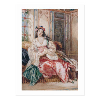 A Lady Seated in an Ottoman Interior Wearing Turki Postcard