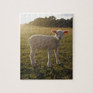 A Lamb at the Setting of the Sun Sweden Jigsaw Puzzle