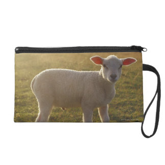A Lamb at the Setting of the Sun Sweden Wristlet Purses
