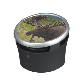 A large bull moose stands among willows bluetooth speaker