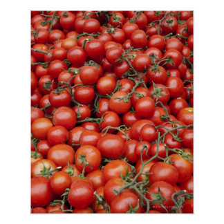 A large crop of tomato on a market stall in poster