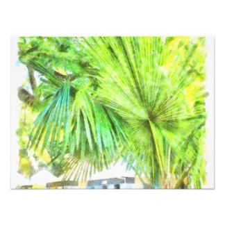 A large leaved palm tree photo art