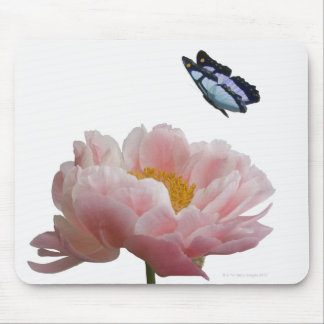 a large pink peony is visited by a ethereal mouse mat