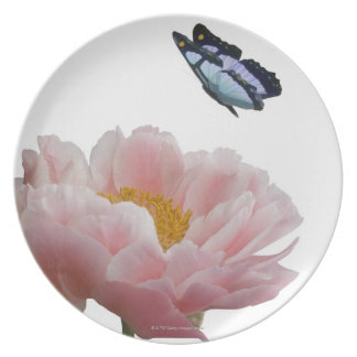 a large pink peony is visited by a ethereal plate