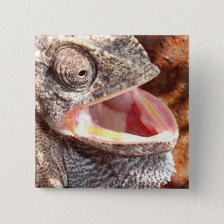 A Laughing Chameleon 15 Cm Square Badge