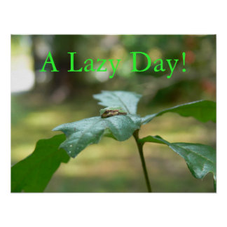A Lazy Day Poster