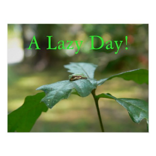 A Lazy Day! Poster