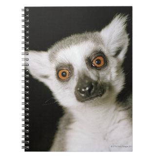 A lemur. notebook