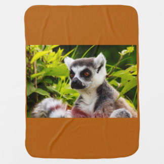 a lemur of madagascar on Baby Blanket