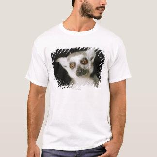 A lemur. T-Shirt
