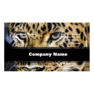 A Leopard's Eyes Pack Of Standard Business Cards