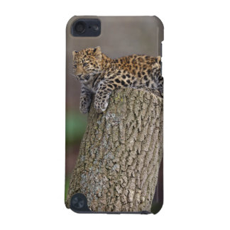 A Leopard's Tail iPod Touch Case