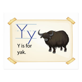 A letter Y for yak Postcard