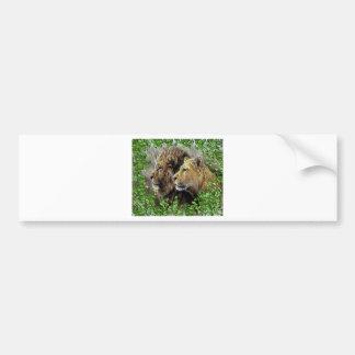 A Lion Affair Bumper Stickers
