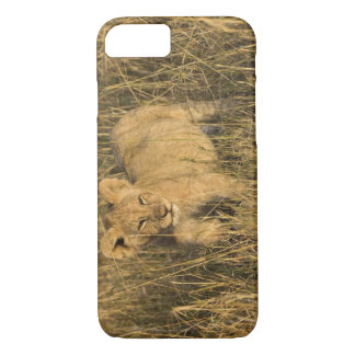 A lion cub laying in the bush in the Maasai Mara iPhone 8/7 Case