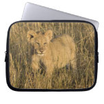 A lion cub laying in the bush in the Maasai Mara Laptop Sleeve