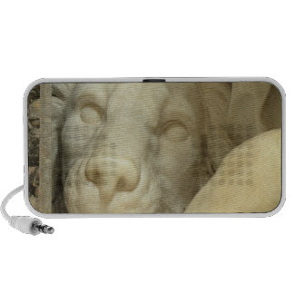 A Lion licking the foot of Daniel Notebook Speakers