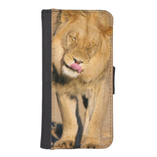 A Lion shaking its head and licking its mouth iPhone SE/5/5s Wallet Case
