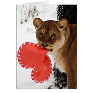 A Lion Share of  Love Card