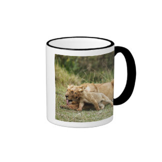 A lioness and her playful cub mugs