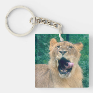 A Lions Roar Key Ring