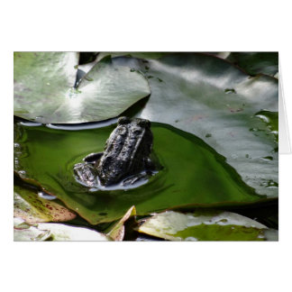 a Little Green Frog Greeting Card
